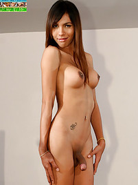 Asian Shemale Piss - Asian Shemale Porn Pics